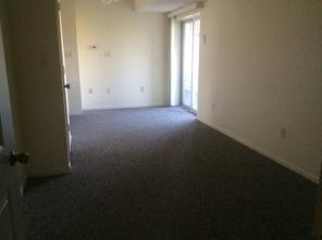 1br -1 Bedroom Apartment